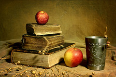 Colors of Time (Arunas S) Tags: stilllife texture apple tin stillleben background faith stilleven stilleben baltic tenn bible tina lithuania flax sn naturemorte tinn  latta theholybible naturamorta naturalezamuerta lietuva palanga  zinn naturezamorta estao estanho landa   cyna martwanatura asetelma kalay natiurmortas natrmort dtain klusdaba dragondaggeraward  stannum sailsevenseas     alavas etamvitae