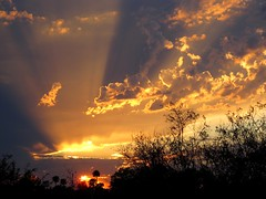 Sunburst Sunset (zoniedude1) Tags: light sunset summer arizona sky sun southwest color nature phoenix beauty weather skyline clouds evening view sundown silhouettes explore sunburst nophotoshop sunrays mybackyard skyshow rooftopview monsoonseason tstorms valleyofthesun cloudshadows rooftopphotography onmyroofagain azstateflag zoniedude1 rooftopphoto canonpowershotg11 earthnaturelife sunburstsunset