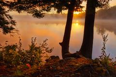 Lakeside Fantasy, Fayette, Maine (Greg from Maine) Tags: trees mist lake nature misty fog sunrise reflections landscape pond maine foggy newengland shore fayette echolake shoreside morningmist kennebec morningfog kennebeccounty fayettemaine