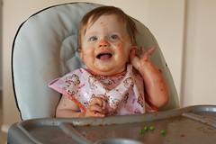 Ellery after Spaghetti