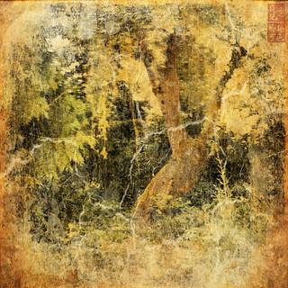 Limits of Treeness I