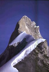 1999. agosto kedar dome, india (26) (samuele striatto) Tags: india dome himalaya scialpinismo kedar gangotri shivling garwal