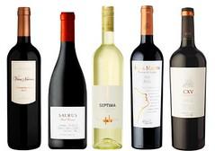 Novedades: Ocho etiquetas de vino que acaban de llegar al mercado