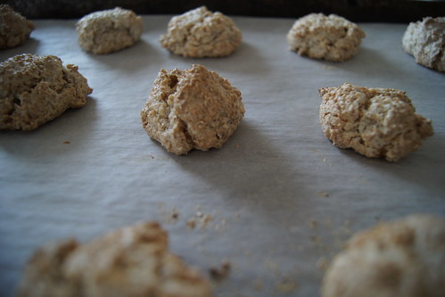 coconut macaroons - baked