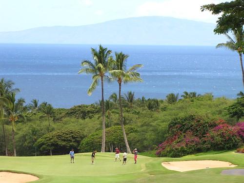 Maui Chiaki 334