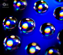Spectrum (Tomatoskin) Tags: blue red macro lights droplets colorful spectrum twinpeaks kam tamron90mm alltime homestudio waterdroplet multicolours hbw alltimefavourite canoneos40d tomatoskin locationsg waterinwater gettyimagessingaporeq1 gettyimagessingaporeq2