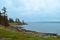 salt spring island (NatOnTheCoast) Tags: travel camping canada wet beautiful rain vancouver island nikon bc britishcolumbia vancouverisland saltspringisland westcoast d3000