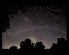 A Dream of Stars (SannePhotos (S. Douthitt)) Tags: statepark trees texture silhouette stars nikon indiana galaxy layers constellation milkyway potatocreek d5000 sarahdouthitt