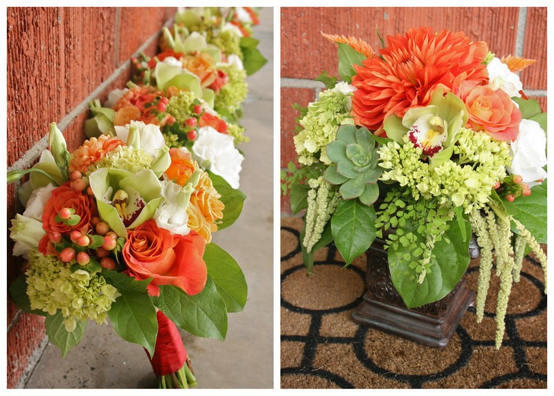 Search results for Kevin & Taylor Flower Pics2