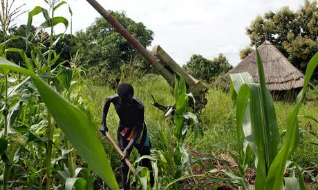 Ферма в Южном Судане
