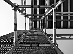 TD Centre Restoration (michaelTO) Tags: bw toronto ontario canada architecture blackwhite scaffolding exterior 365 tdcentre torontodominioncentre 2011 ludwigmiesvanderrohe project365 royaltrusttower 60225mm 3652011 365the2011edition