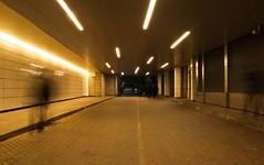 London night scene (Sharp Shots pix) Tags: londonnight websitearchitecture