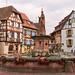 The nice village of Eguisheim