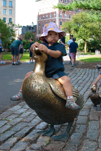 Sitting on Mrs. Mallard
