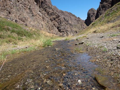 Desierto del Gobi 34