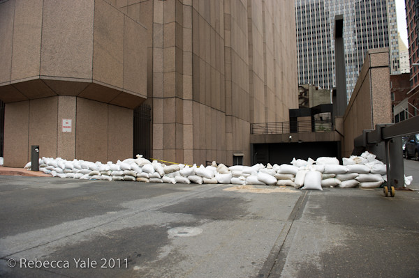 RYALE_Hurricane_Irene_Aftermath_NYC-1