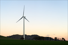 waubra-6346-ps-w (pw-pix) Tags: blue trees sunset sky sun tree power towers australia windmills victoria hills windfarm ballarat windpower lateafternoon settingsun windturbines baldhills powergeneration centralvictoria acciona waubra nearballarat waubrawindfarm