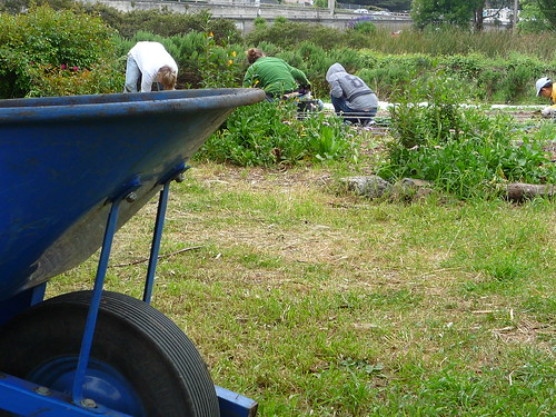 """Pics just look better with a wheelbarrow in them • <a style=""""font-size:0.8em;"""" href=""""http://www.flickr.com/photos/63818521@N02/6100182257/"""" target=""""_blank"""">View on Flickr</a>"""