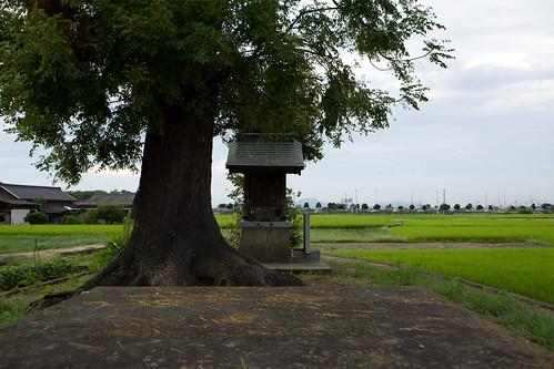 Zentsuji 26 Aug 2011