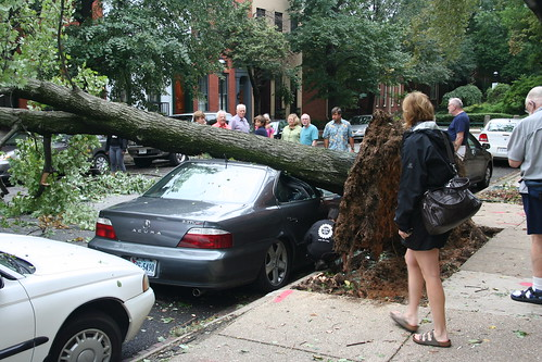 irene damage