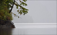 Misty Fjords - Alaska (blmiers2) Tags: travel mist green nature fog alaska nikon gray mistyfjords d3100 blm18 blmiers2