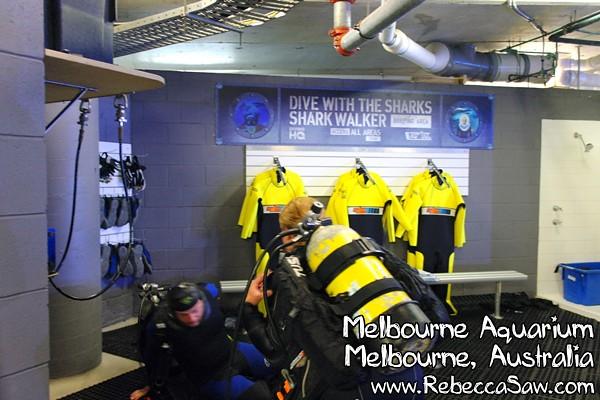 MELBOURNE AQUARIUM-04
