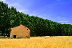 La vieja casa (Miguel101_) Tags: old españa house landscape casa spain bonito paisaje viejo belleza beautifull muñoveros miguel©