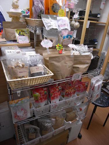 うさぎ専門店『CuteRabbit』@田原本町-08