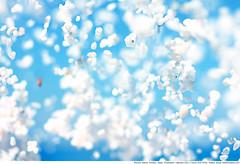 236 - Marble Rain (Ata Foto Grup) Tags: blue sea sky white beach island 50mm ada flying air aegean greece marble deniz beyaz mavi onair hava gökyüzü ege vathi thassos thasos mermer havada marblebeach vathibeach taşoz