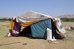 Nawabad 21-08-2100 046 (drs.sarajevo) Tags: afghanistan refugees idps returnees deportees heratcity ferqhaarea
