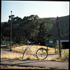 I found my thrill (mossieu eric) Tags: sanfrancisco california usa tree 120 6x6 film bike sign fuji rental hasselblad negative highway1 bayarea highway101 planar 500cm carlzeiss redwoodhighway route101 2011 alexanderavenue pro160s stateroute1 201106 8028t nocassettetapeplayeronrentalbikeseither