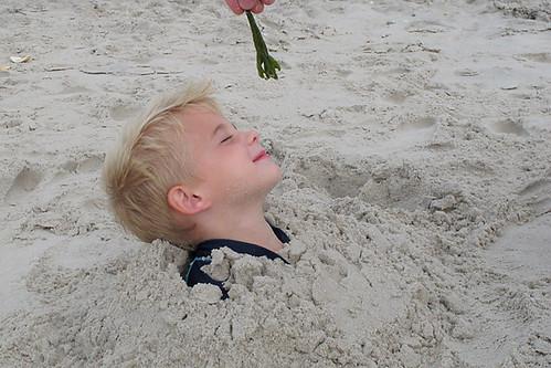 BeachTrip08PS
