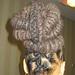 hair compa