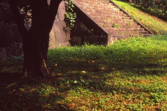 古びた石段