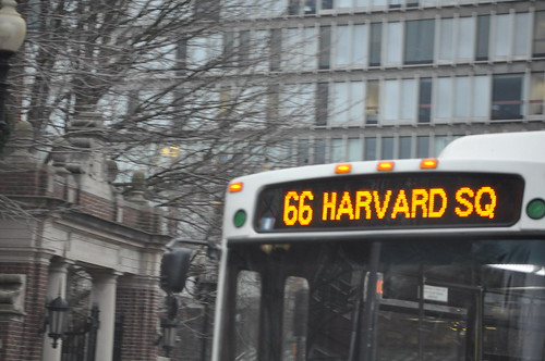Harvard Sq Bus