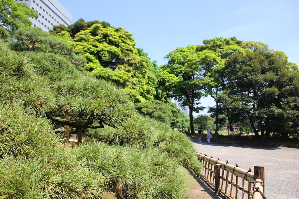 A walking guide of Hamamatsucho  (13)