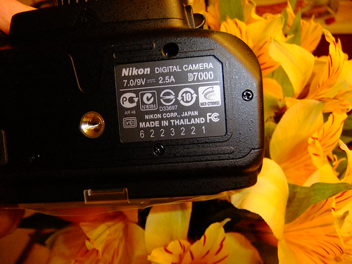 nikon d800 serial number problems up and down