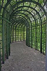 Plant tunnel (Beyond the grave) Tags: netherlands gardens veluwe apeldoorn gelderland hetloo royalpalaces paleishetloo hetloopalace