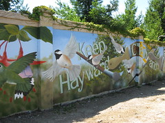 Hayward Wall - 04