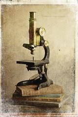 Men love to wonder, and that is the seed of science. Ralph Waldo Emerson (Trevellion) Tags: weekendshowcase kimklassenstexturetuesday texturesusedkk2maskandscratches framefromjenny thisisatmyhousenotamuseum