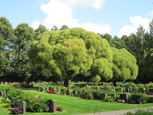 Malmin hautausmaalla by Anna Amnell