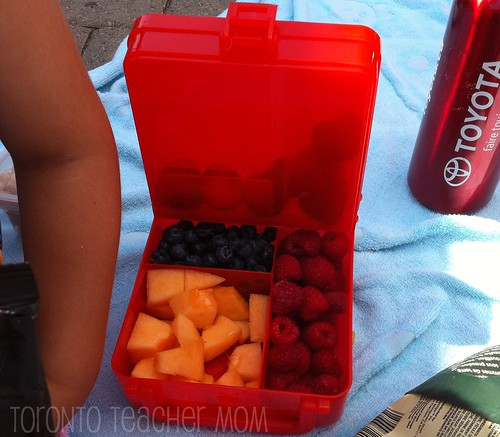 Non-Toxic Lunch Box Cube