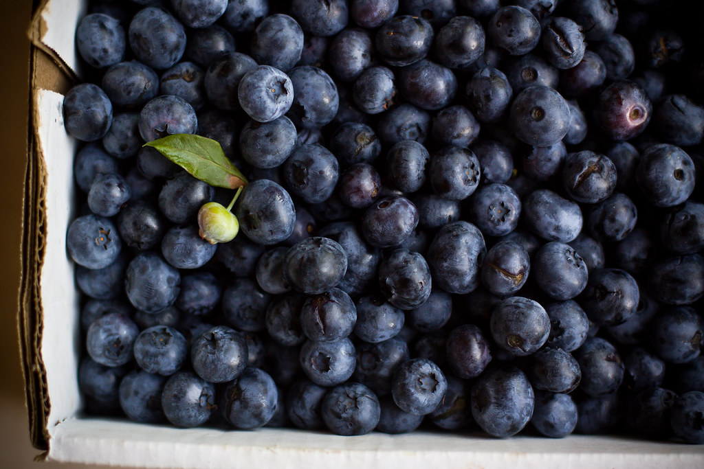 Blueberries_6049