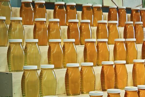 Honeys by Bart Heird, on Flickr