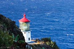 Makapuu Lighthouse (rayman102) Tags: ocean lighthouse macro water architecture landscape hawaii landmark 7d makapuu makapuulighthouse 100l landscapeoahu