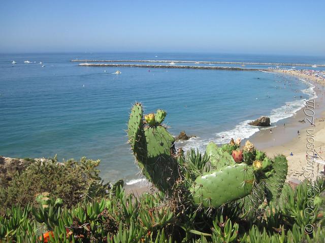 D3 beach Newport Beach