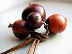 Tania Cavenecia Torres concurso de fabricación de perlas de tagua sep 2011 (2)