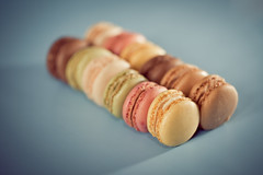 Macarons (François Dorothé) Tags: food paris france color colors french dessert colorful sweet couleurs biscuit patisserie macaroon pastry sweets biscuits treat couleur delicacy macaroons macarons macaron friandise françoisdorothé francoisdorothe