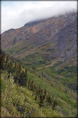 Mountains - Klondike Highway (blmiers2) Tags: travel mountain mountains green nature alaska landscape nikon highway klondike d3100 blm18