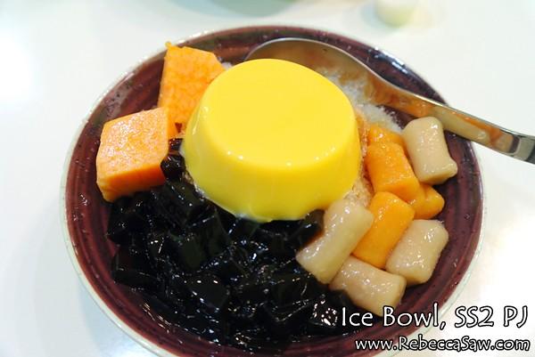 ice bowl ss2 PJ-17